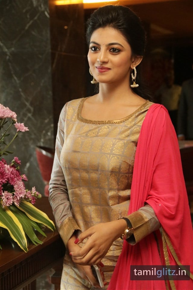 Anandhi At EIPI Press Meet Photos-01