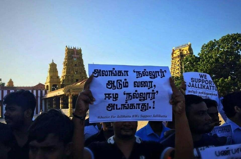 Protest for Jallikattu by Sri Lankan Tamils 3
