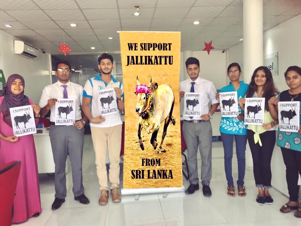 Protest for Jallikattu by Sri Lankan Tamils 1