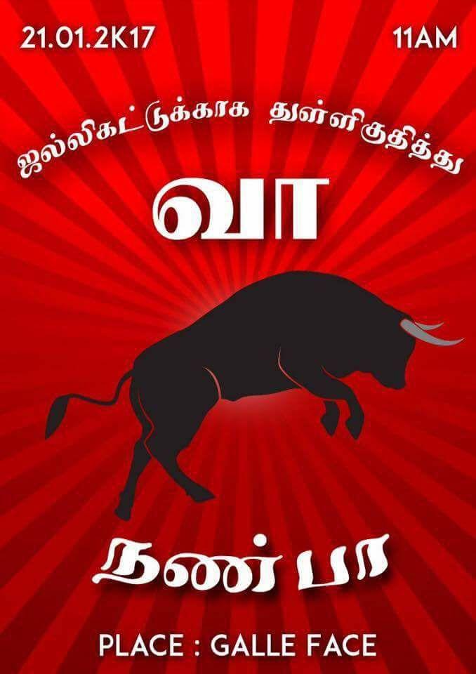 Protest for Jallikattu by Sri Lankan Tamils 4