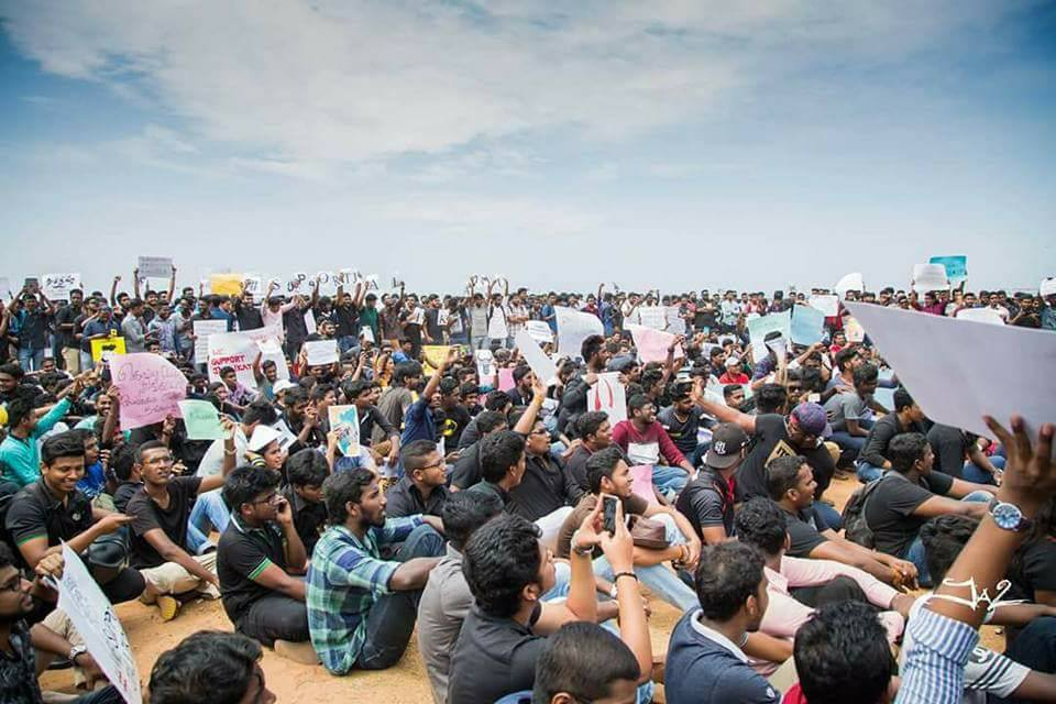 Tamils from These Countries also Protested for Jallikattu 5