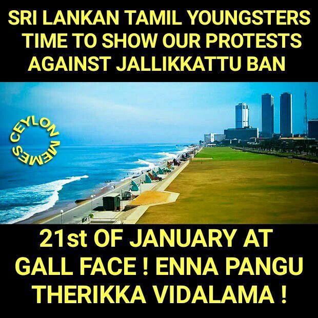 Protest for Jallikattu by Sri Lankan Tamils 5