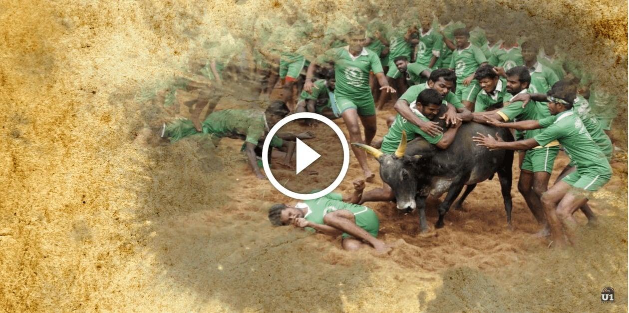 Jallikattu - Santhanathevan | Official Lyric Video | Yuvan Shankar Raja | Ameer | Arya | Vairamuthu 4