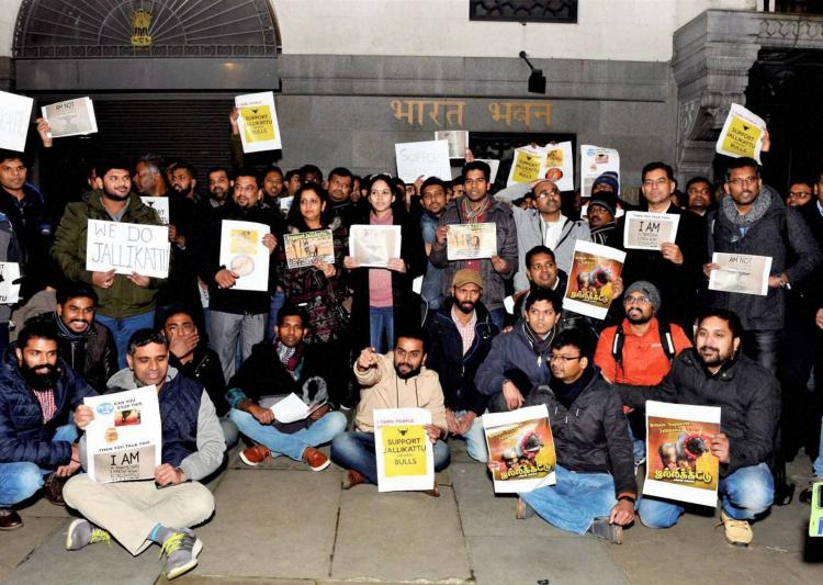 Tamils from These Countries also Protested for Jallikattu 2