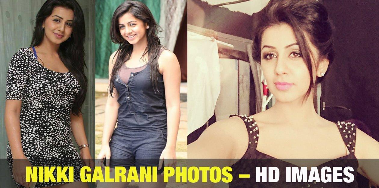Nikki Galrani Photos – HD Images 102
