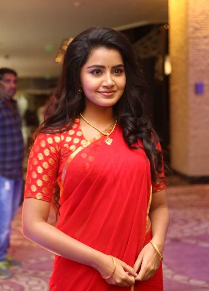 Top 10 Cute Photos of Anupama Parameshwaran 22