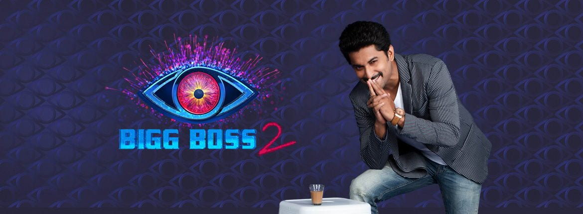 Bigg Boss 2 Telugu Contestants 1