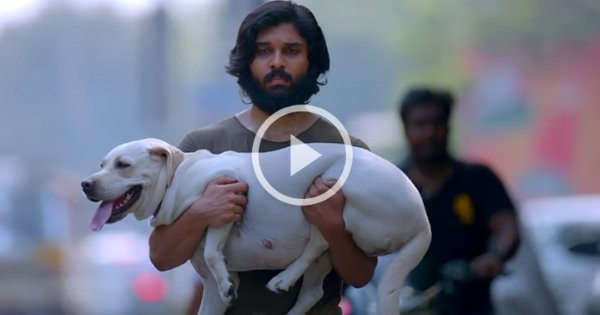 Varma Official Teaser | Arjun Reddy Remake 7