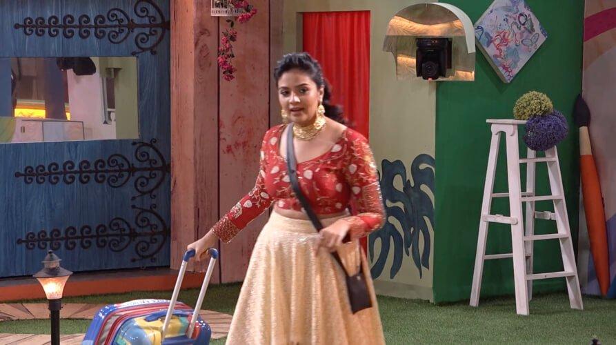 Bigg Boss Telugu Vote Season 3 - Star Maa - Bigg Boss 3 Telugu