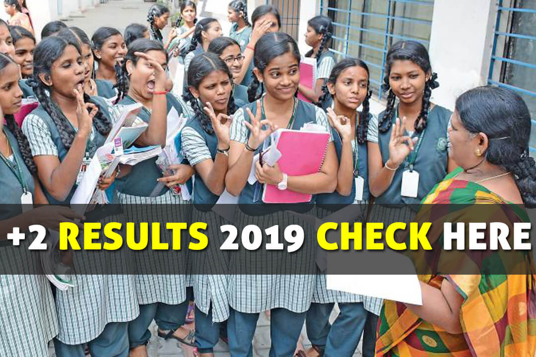 tn results 12th 2019